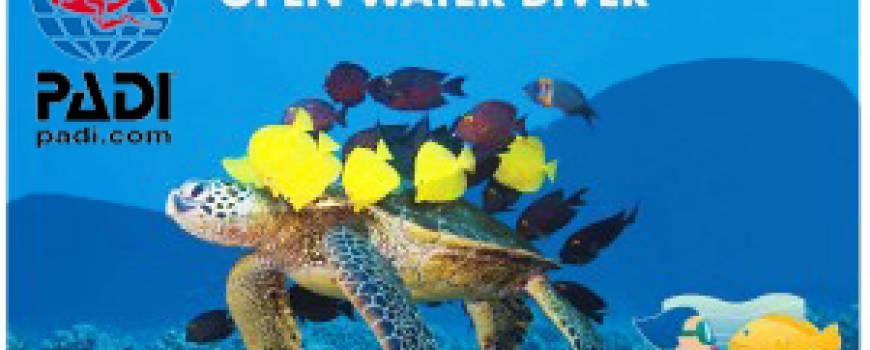 14_open-water-diver.jpg
