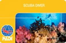57_scuba_diver_padi_card.jpg